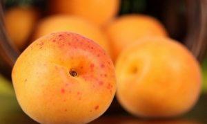 омолаживающие маски с абрикосом